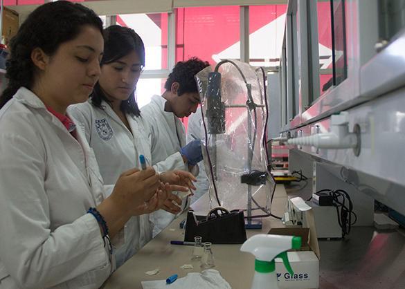bolsa-hecha-con-olote-maiz-desarrollada-estudiantes-universidad-autonoma-queretaro