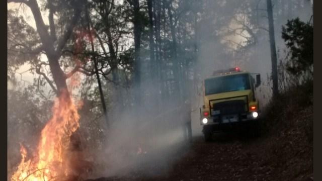 Suman más de 800 incendios forestales en Acapulco, Guerrero