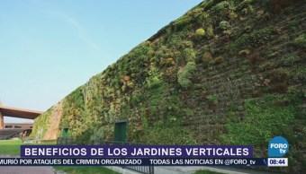 Conoce los beneficios de los jardines verticales
