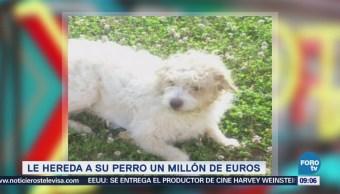 Le hereda a su perro 1 millón de euros