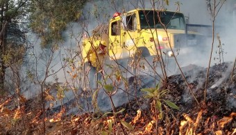 Van 40 incendios forestales en actual temporada en Colima