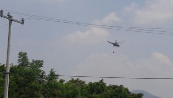 Combaten incendio forestal en Uruapan, Michoacán