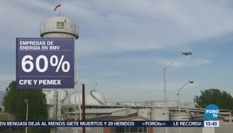 Pemex Cfe Recaudan 60% Sector Energético Bmv