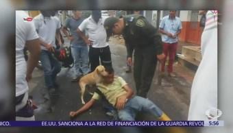 Perro Cuida Dueño Ebrio Mientras Duerme Calle Colombia