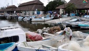 Pescadores de Campeche inician veda de camarón concluirá en septiembre