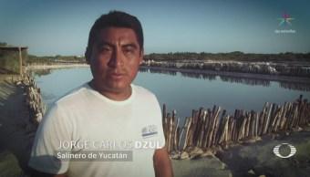 Pescadores Rescatan Charcas Salineras Yucatán Mayas