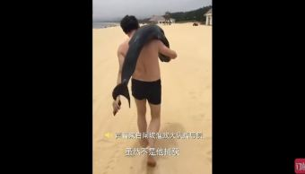 buscan turista que se llevo delfin playa china