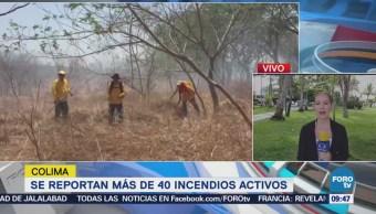 Reportan 40 Incendios Forestales Colima