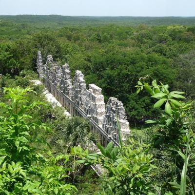 Yucatán se une a la lucha global por el Medio Ambiente