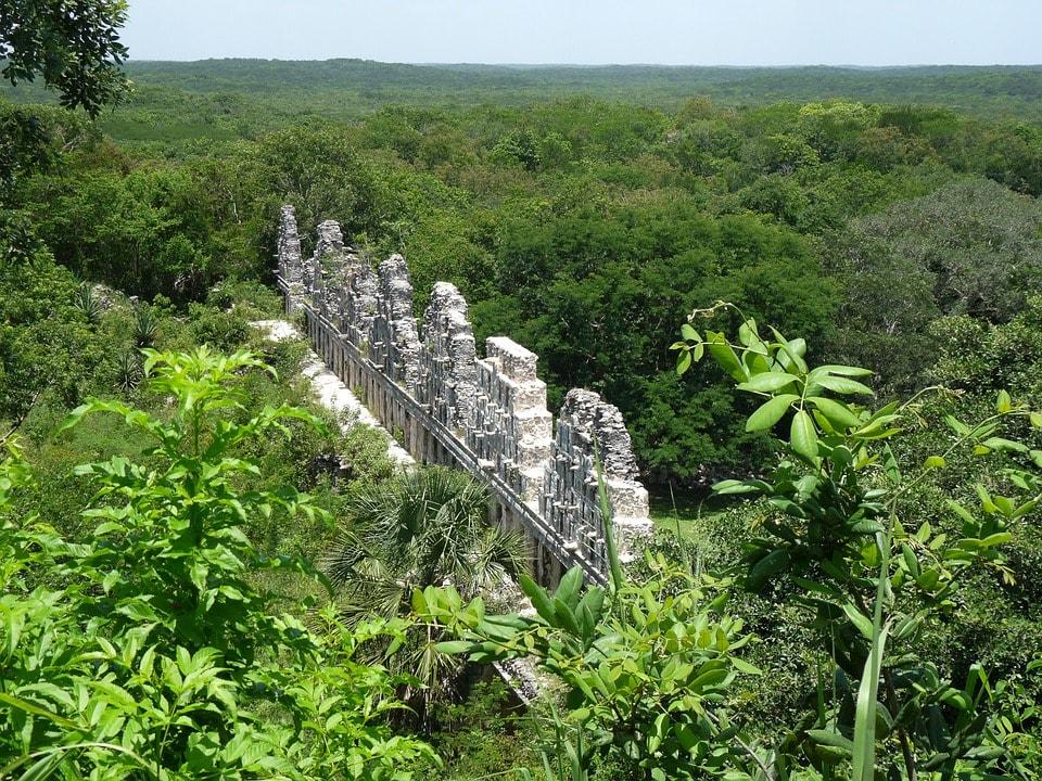 yucatan-se-une-lucha-global-medio-ambiente-0
