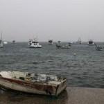 Desalojan 150 personas por lluvias 'Bud' en Colima