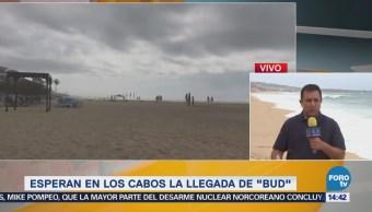 Baja California Sur está preparada enfrenta