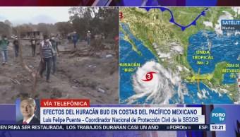 Bud Tocará Tierra Tormenta Tropical Felipe Puente