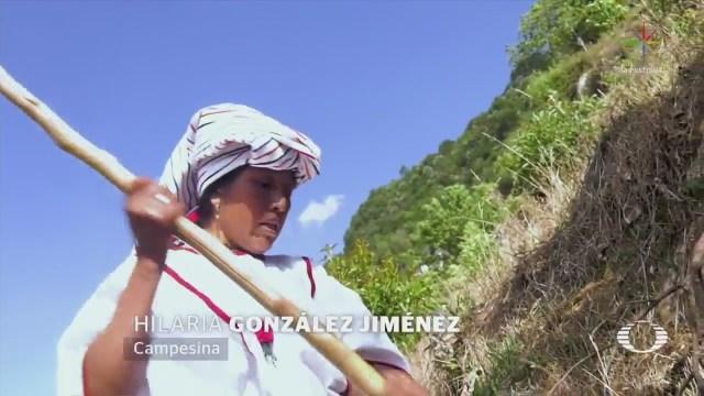 Campesinas de Oaxaca implementan nuevas técnicas agricultura