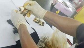 Decomisan en Aeropuerto de Querétaro droga oculta en mole