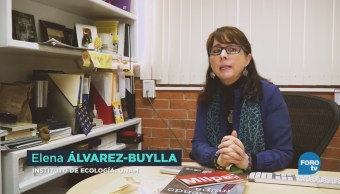 Elena Álvarez Buylla Premio Nacional Ciencias