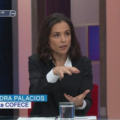 Entrevista a Alejandra Palacios, presidenta de la Cofece