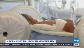 Extra Extra: Nacen cuatrillizos en Monterrey