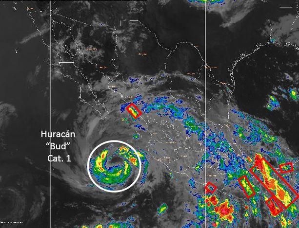 'Bud' llegará a costas de Baja California Sur como tormenta tropical