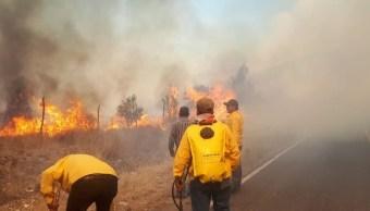 Se registra incendio en el ejido Las Copetonas en Arteaga