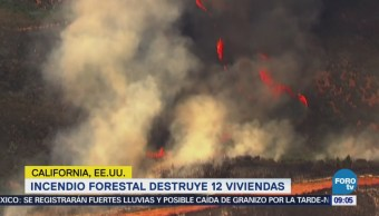 Incendio forestal en California destruye 12 viviendas