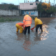 Lluvias en Guanajuato causan inundaciones y afectan vivienda
