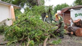 Carlotta deja lluvias y 4 lesionados en costas de Guerrero