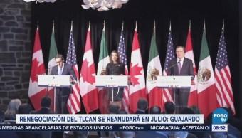 Renegociación TLCAN Reanuda Julio Ildefonso Guajardo