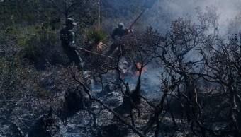 Continúa alerta en NL y Coahuila por incendio forestal