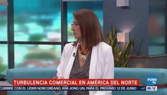 Turbulencia Comercial América Norte Luz María de la Mora