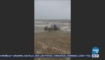 Turistas Ayudan Delfín Varado Playa Del Carmen
