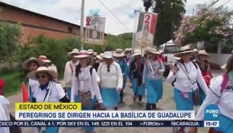 Avanza Caminata Fe Hacia Basílica Guadalupe