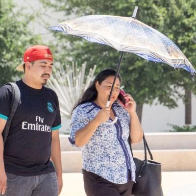 Pronostican ambiente caluroso en el Valle de México