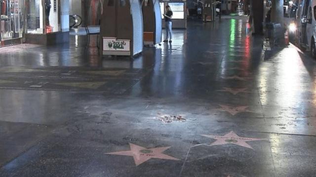 Destruyen estrella de Trump en Hollywood, otra vez