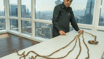 Hombre con las uñas más largas del mundo decidió cortárselas