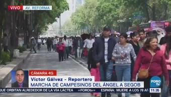 Manifestantes afectan tránsito de carriles centrales sobre Reforma, CDMX