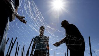 Corte de EU prohíbe importación de pescado mexicano