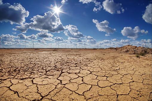Ola de calor es por cambio climático: Científicos de Oxford