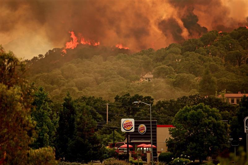 Incendio forestal en California fue provocado por accidente