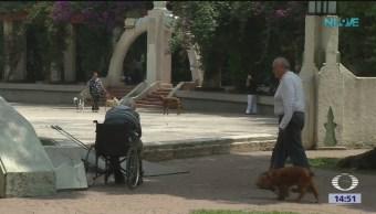 Adultos Mayores Enfrentan Retos México