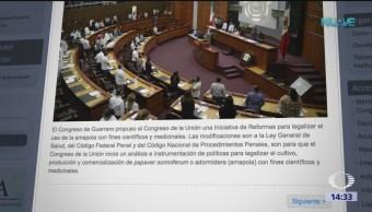Congreso de Guerrero envía iniciativa de ley sobre amapola