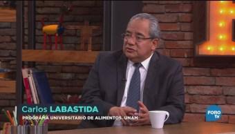Cultivo Consumo Maíz Frijol México Carlos Labastida Experto De La Unam Consumo De Maíz