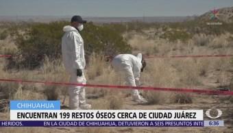Descubren casi 200 restos óseos en Chihuahua