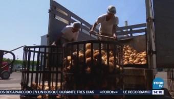Desocupación en México se mantiene en 3.3%: INEGI