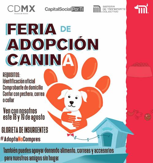 Feria Adopción Canina Perros Insurgentes Metro