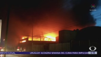 Incendio consume empresa de residuos biológicos