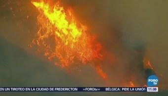 Incendio forestal amenaza miles de viviendas en California