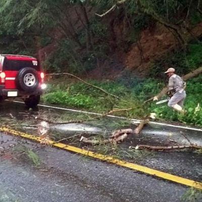 Lluvia provoca inundaciones, apagones y caída de árboles en Guadalajara
