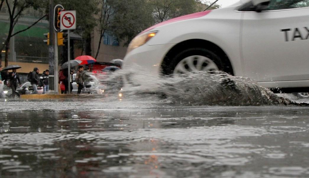 Lluvia en la CDMX provoca caída de árboles y encharcamientos