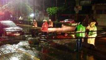 Lluvias en Oaxaca provocan inundaciones y caída de árboles